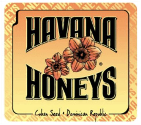 Havana Honeys